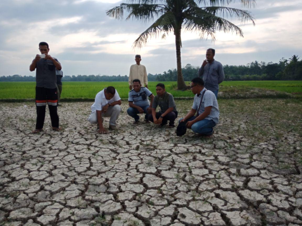 Sawah Petani di Aceh Utara Kekeringan, Kapolres Bantu Sumur Bor